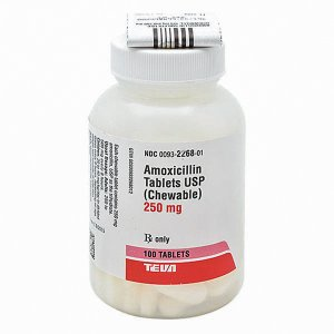 AMOXICILLIN CHEWABLE 250MG Brand Equivalent: AMOXIL 250MG NDC: 00093226801UPC: 300932268012 Item: 300272 Size: 100 Form: TABLET Manufacturer: TEVA